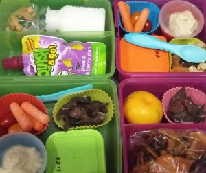 Lunchbox filled with clean healthy food
